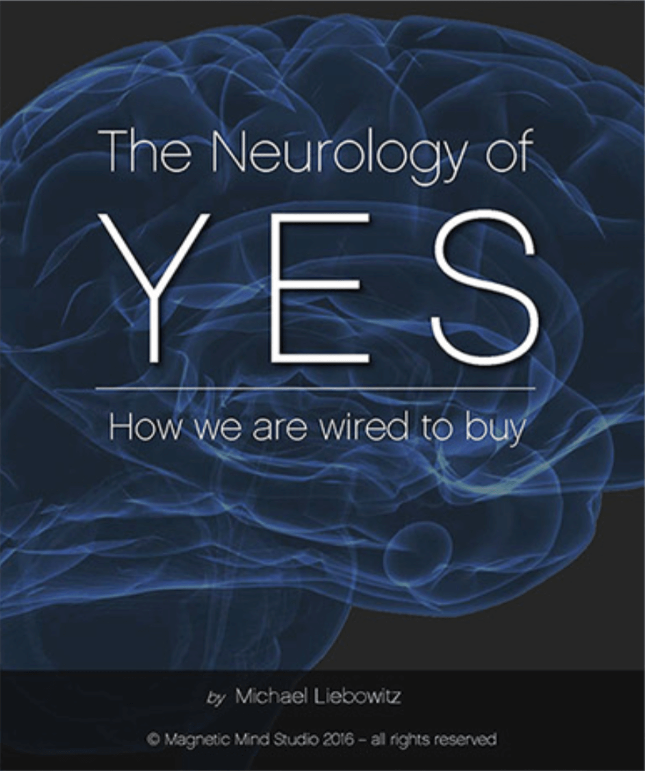 Neurology of YES - Magnetic Mind Studio - Branding & Product Development - California
